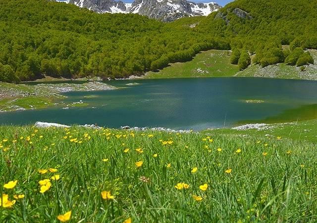 LAGO VIVO, la bellezza della natura senza confini